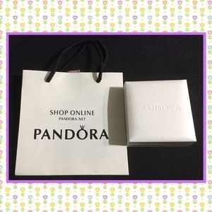 Pandora bangle gift box and bag set